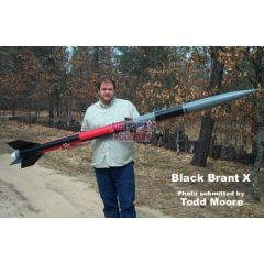 BLACK BRANT X